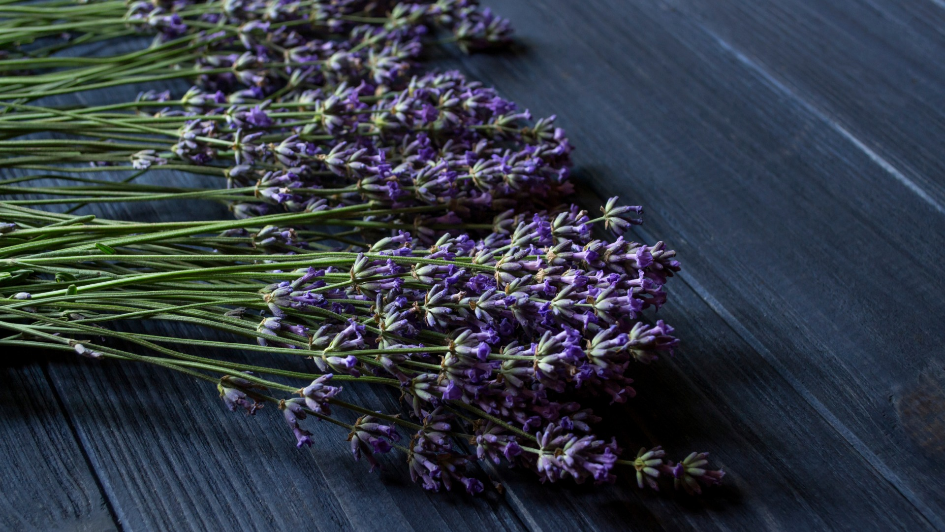 4 bylinky pre lepší spánok